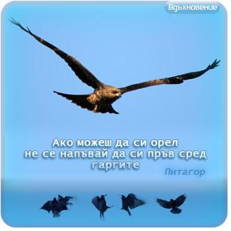 Как минават наш`те дни, на кратко всеки ще ни разясни :))) - Шльокавица - тема 32 - Page 2 1360436