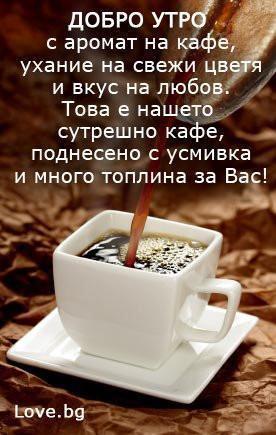 ДОБРО УТРО СЪС СТИХ!