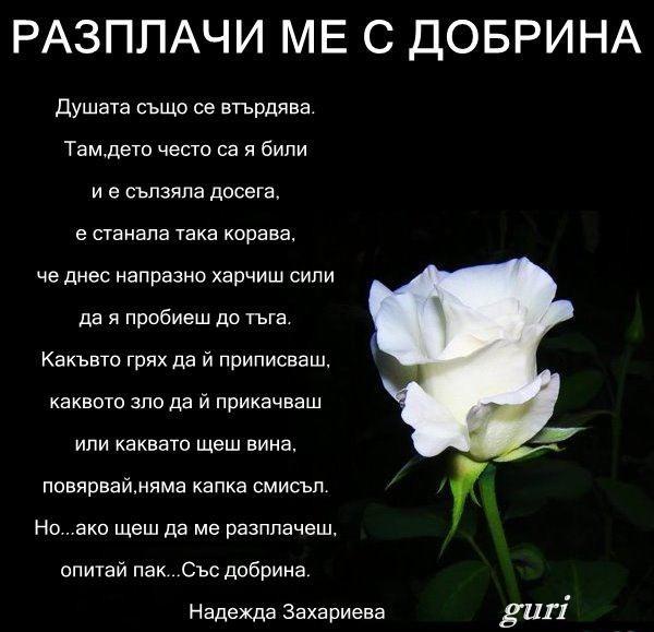 колекция-от-стихове-и-поеми.-виртуална-поезия