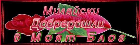 МОЙ-АЛБУМ